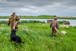 DU-HA Dri-Hide - When you head out duck hunting, protect your gun from moisture with a Dri-Hide.